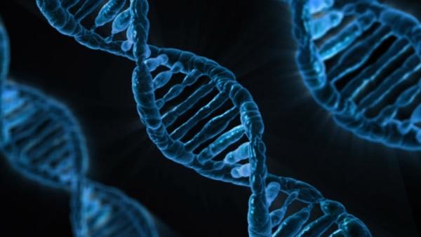 DNA a o tom, že nie sme Slovania