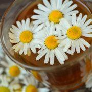 Kamilky a liečiteľstvo, byliny a čaje
